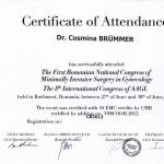 Dr. Cosmina Brummer